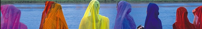 india-rainbowveils